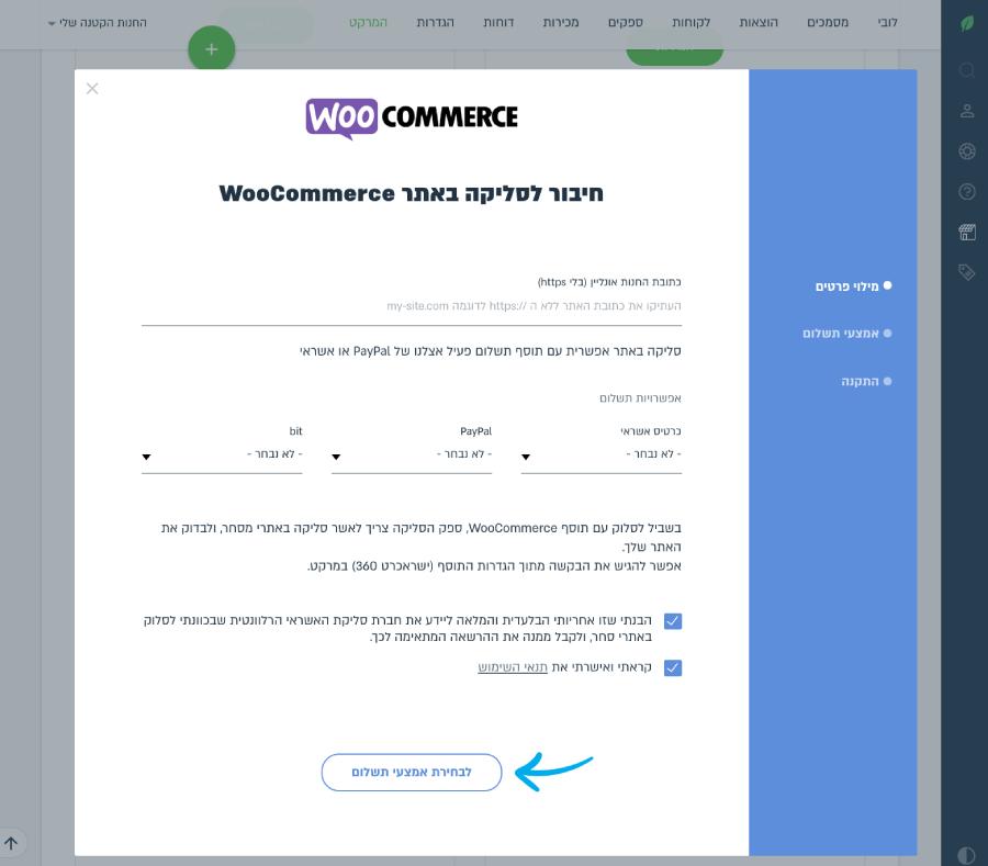 הזנת כתובת האתר, בחירת אפשרויות התשלום ואישור תנאי השימוש